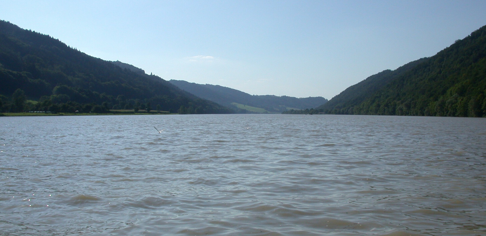 The river Danube near Jochenstein